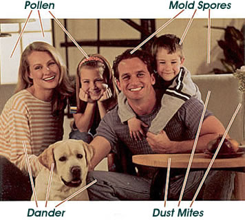 Better Boca Indoor Air With Duct Cleaning